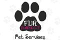 Pet Grooming Cambodia